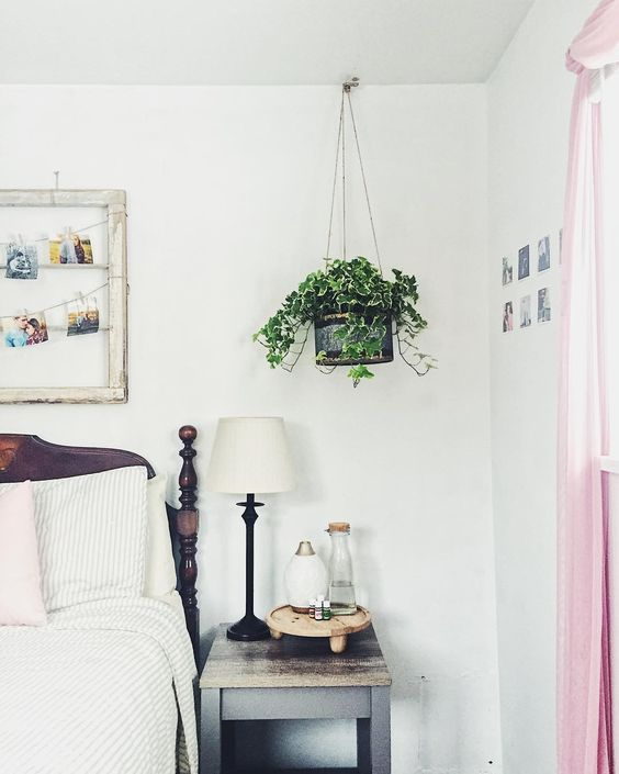 Kleinbladige Klimop slaapkamer